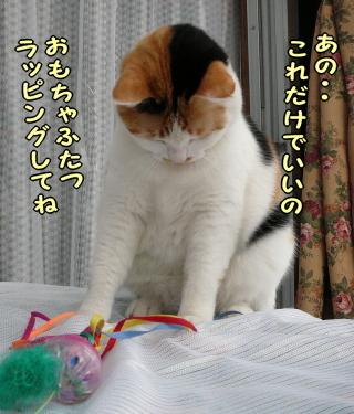 Mimi_3