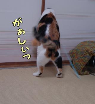 Image3_2